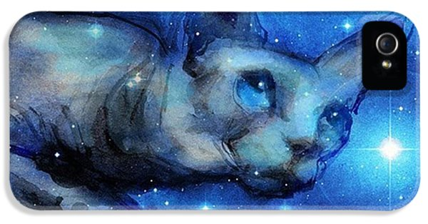 iPhone 5 Case - Cosmic Sphynx Painting By Svetlana by Svetlana Novikova
