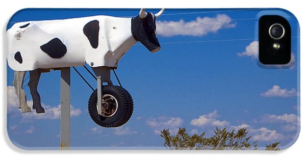 Cow Power IPhone 5 Case by Skip Hunt