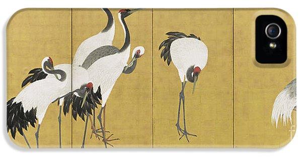 Cranes IPhone 5 Case by Maruyama Okyo