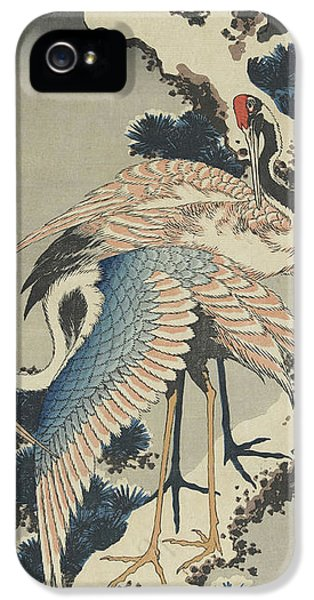 Cranes On Pine IPhone 5 Case by Hokusai