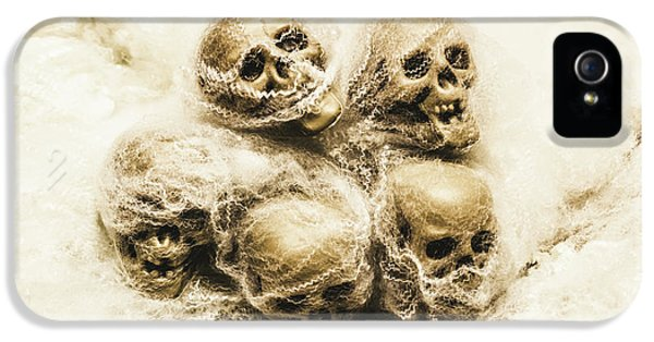 Creepy Skulls Covered In Spiderwebs IPhone 5 Case