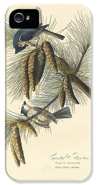 Titmouse iPhone 5 Case - Crested Titmouse by Dreyer Wildlife Print Collections