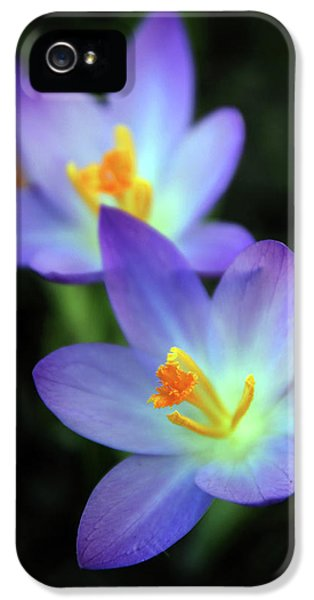 IPhone 5 Case featuring the photograph Crocus In Bloom by Jessica Jenney