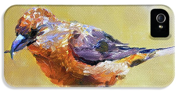 Crossbill IPhone 5 Case by Jan Hardenburger