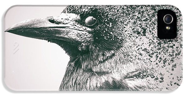 Crow Dispersion IPhone 5 Case