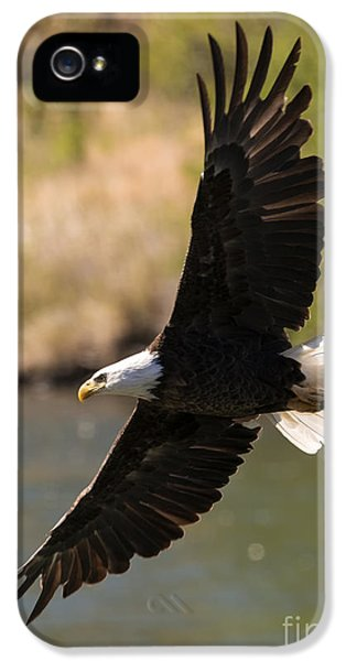 Cruising The River IPhone 5 Case by Mike Dawson