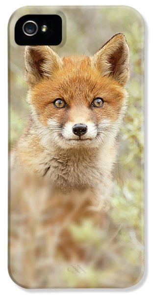 Cute Overload Series - Happy Baby Fox IPhone 5 Case