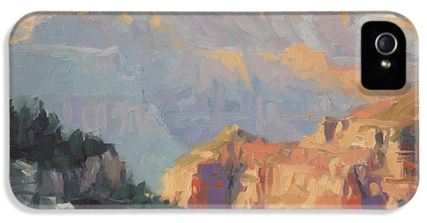 Grand Canyon iPhone 5 Case - Daybreak by Steve Henderson