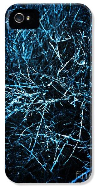 Dead Trees  IPhone 5 Case