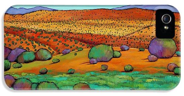 Desert iPhone 5 Case - Desert Day by Johnathan Harris