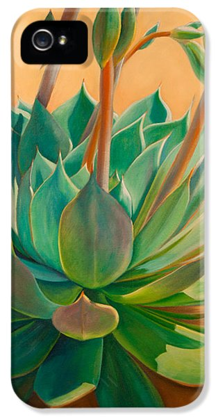 Desert iPhone 5 Case - Desert Rainbow by Athena Mantle