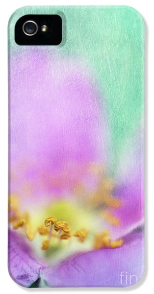 Detail Of A Wild Rose IPhone 5 Case