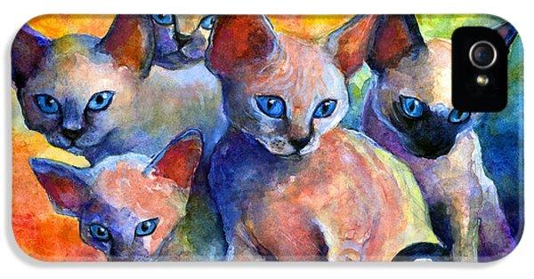 Austin iPhone 5 Case - Devon Rex Kitten Cats by Svetlana Novikova