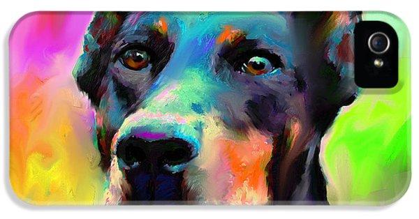 Doberman Pincher Dog Portrait IPhone 5 / 5s Case by Svetlana Novikova