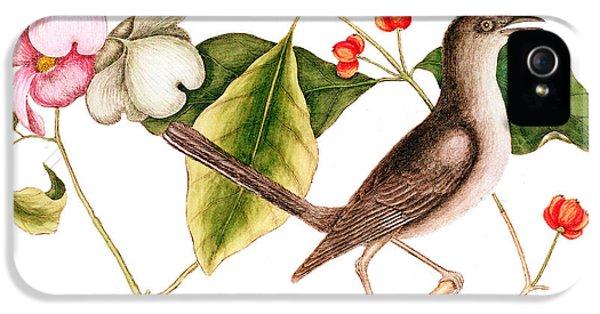 Dogwood  Cornus Florida, And Mocking Bird  IPhone 5 Case