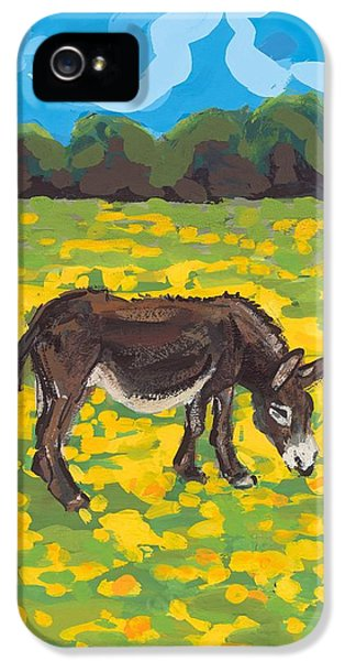 Donkey And Buttercup Field IPhone 5 Case by Sarah Gillard