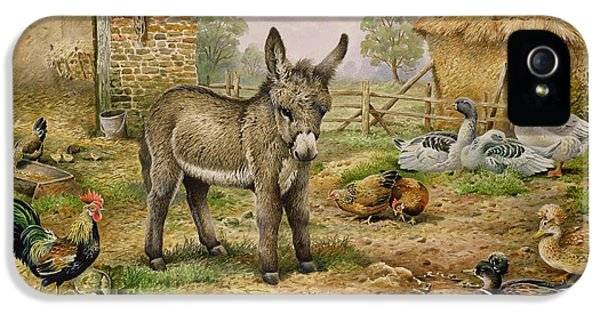 Donkey And Farmyard Fowl  IPhone 5 / 5s Case by Carl Donner