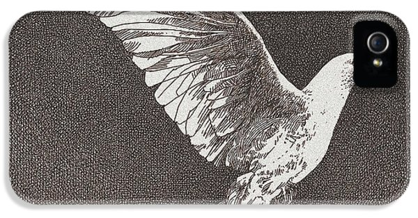 Dove Drawing IPhone 5 Case by William Beauchamp