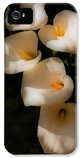 Dreamy Lilies IPhone 5 Case by Mick Burkey