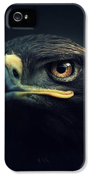 Eagle iPhone 5 Case - Eagle by Zoltan Toth