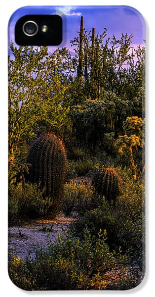 East Of Sunset V40 IPhone 5 Case by Mark Myhaver