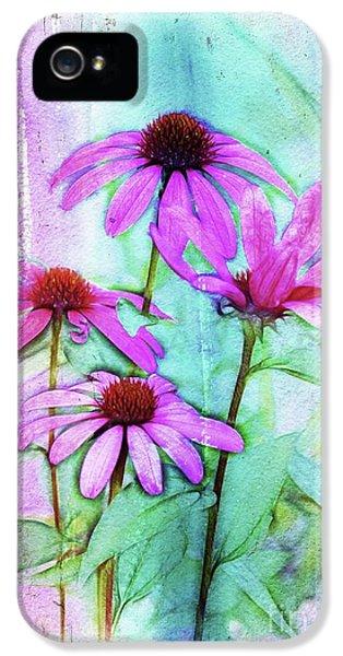 Echinacea - A05cc IPhone 5 Case