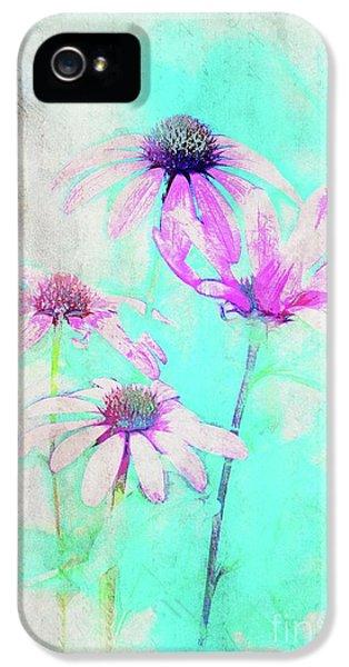Echinacea - A21t25 IPhone 5 Case
