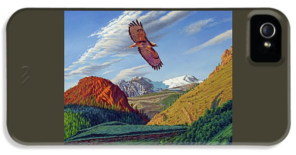 Hawk iPhone 5 Case - Electric Peak With Hawk by Paul Krapf