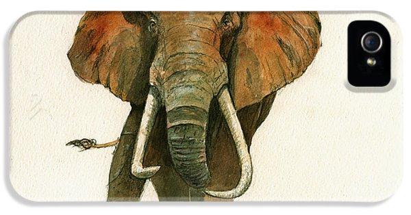 Elephant Painting           IPhone 5 Case by Juan  Bosco