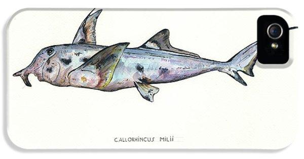 Hammerhead Shark iPhone 5 Case - Elephant Shark by Juan Bosco