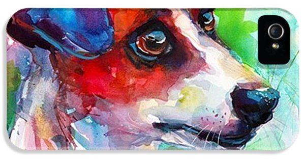 iPhone 5 Case - Emotional Jack Russell Terrier by Svetlana Novikova