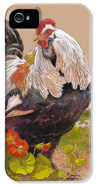 Chicken iPhone 5 Case - Emperor Norton by Tracie Thompson