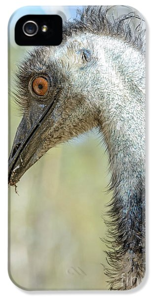 Emu 3 IPhone 5 Case
