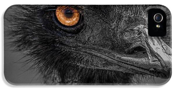 Emu IPhone 5 Case by Paul Freidlund