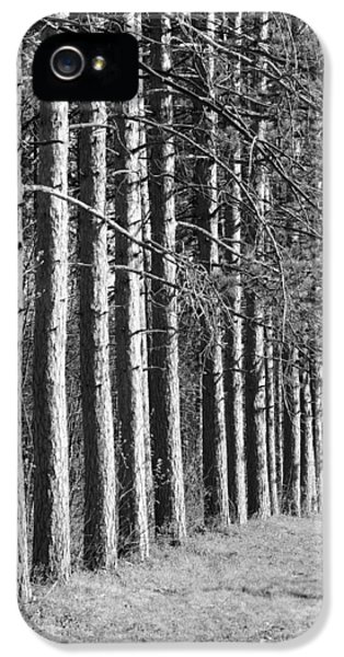 Enchanted Forest IPhone 5 / 5s Case by Luke Moore