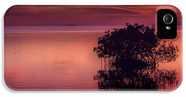 End Of Another Day IPhone 5 Case by Marvin Spates
