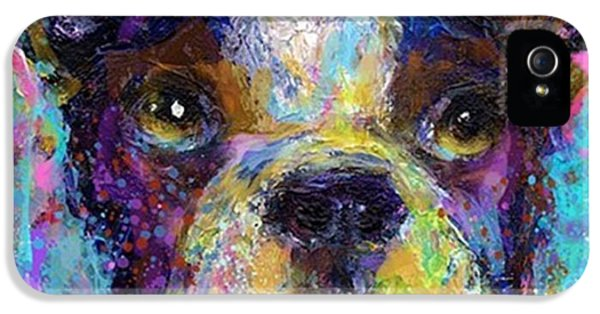 iPhone 5 Case - Expressive Boston Terrier Painting By by Svetlana Novikova
