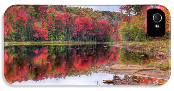 IPhone 5 Case featuring the photograph Fall Color At The Pond by David Patterson