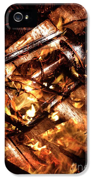 Fall In Fire IPhone 5 Case by Jorgo Photography - Wall Art Gallery
