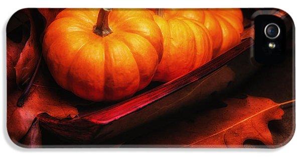 Fall Pumpkins Still Life IPhone 5 Case by Tom Mc Nemar