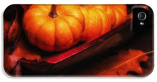 Fall Pumpkins Still Life IPhone 5 / 5s Case by Tom Mc Nemar