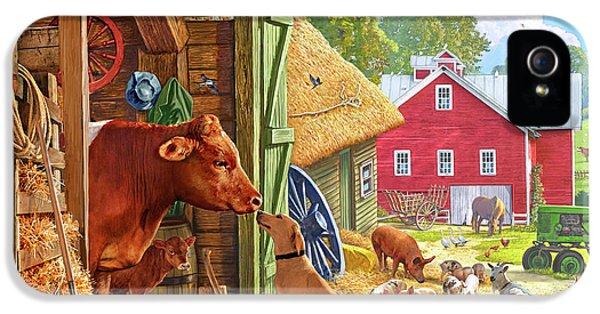 Swallow iPhone 5 Case - Farm Scene In America by Steve Crisp