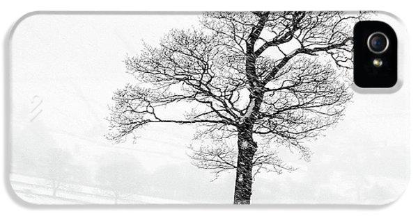 Sheep iPhone 5 Case - Farndale Winter by Janet Burdon