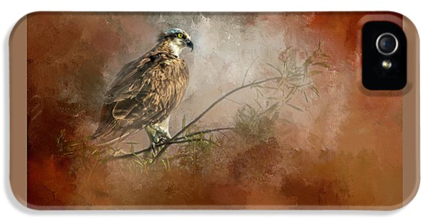 Osprey iPhone 5 Case - Farsighted Wisdom by Marvin Spates