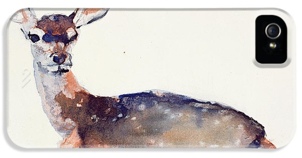 Fawn IPhone 5 Case by Mark Adlington