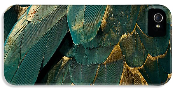 Feather Glitter Teal And Gold IPhone 5 Case by Mindy Sommers