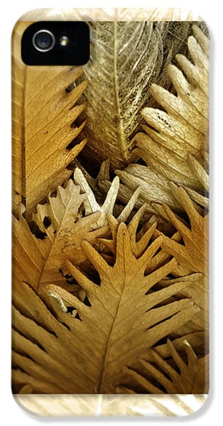 iPhone 5 Case - Feeling Nature by Holly Kempe