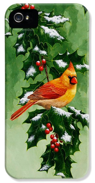 Female Cardinal And Holly Phone Case IPhone 5 / 5s Case by Crista Forest
