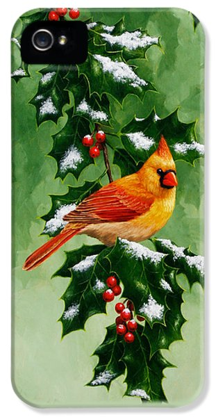 Female Cardinal And Holly Phone Case IPhone 5 Case by Crista Forest