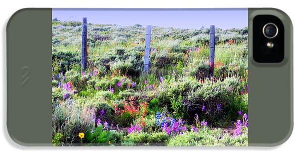 IPhone 5 Case featuring the photograph Field Of Wildflowers by Karen Shackles